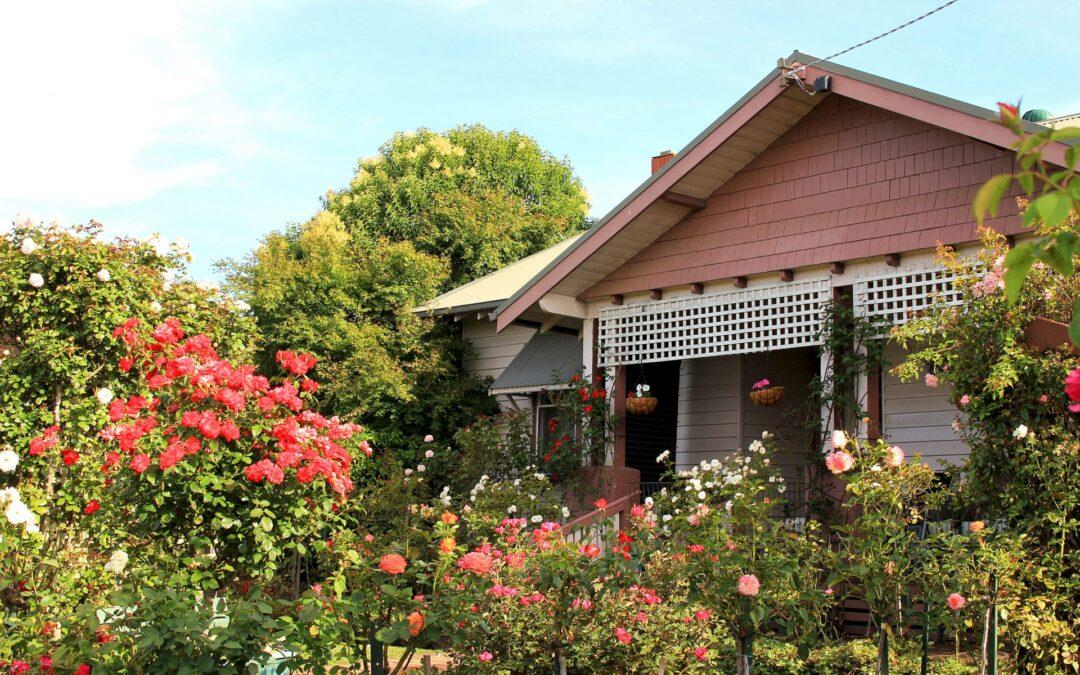 Gardening under the Australian sun