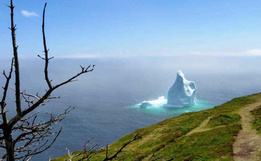 Where are the best places to live in Newfoundland? Seeing the icebergs floating down 'Iceberg Alley' is quite a sight.