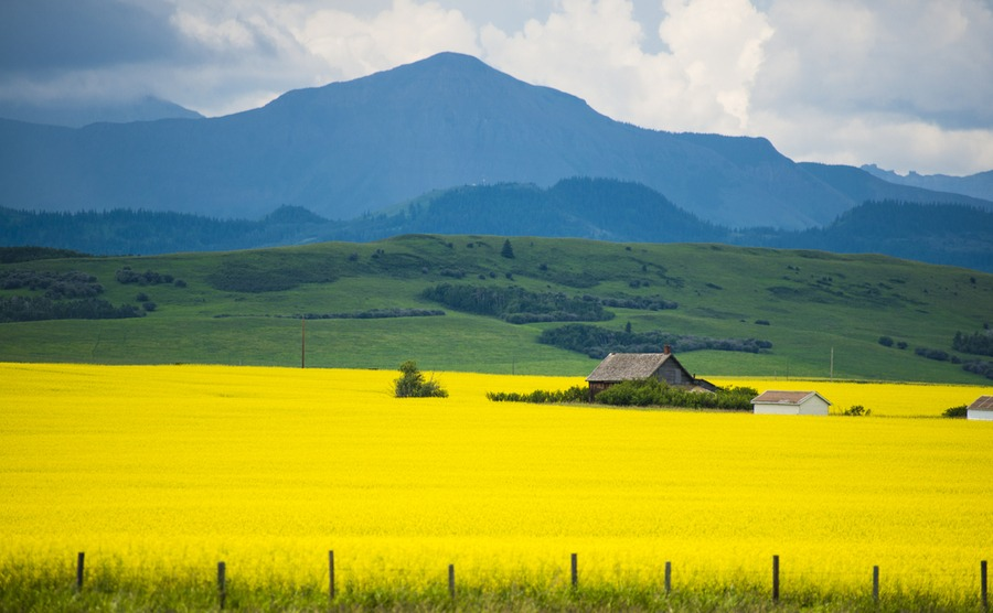 Rural Canada offers great job prospects, beautiful scenery and affordable property.