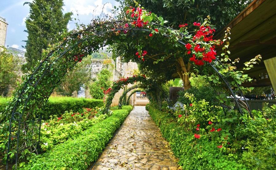Gardening under the Cypriot sun