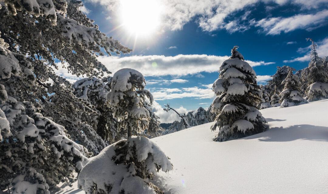 Skiing in Cyprus: a winter wonderland