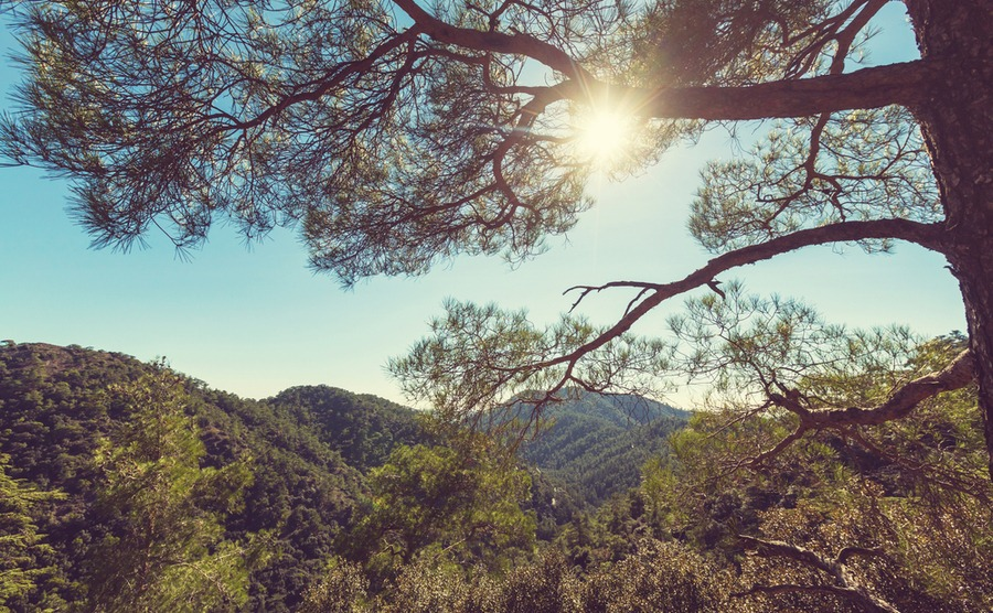 An update from Cyprus: Discovering beautiful nature trails