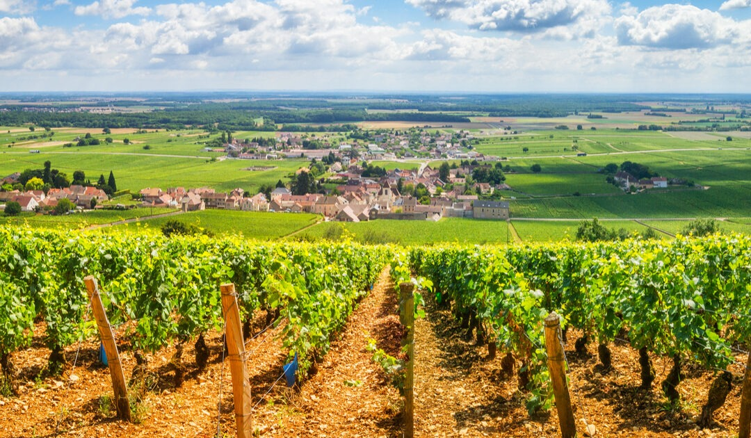 French village houses for under €100,000 (including buying costs!)