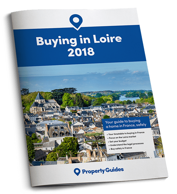 Get your free guide to buying in Loire
