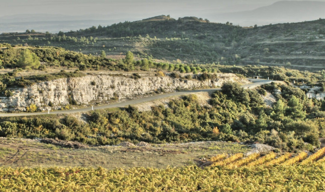 """""""We've never looked back"""": swapping the London rat race for the peace of the Languedoc-Roussillon"""