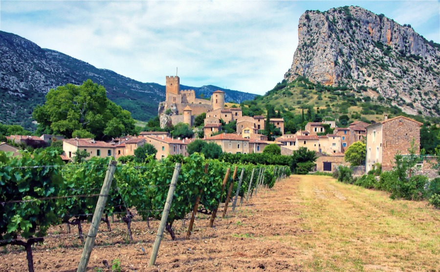Some of the best things about living in the south of France have to be the climate, the delicious food and the beautiful countryside.