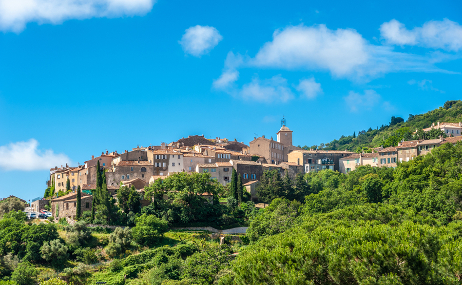 Living in the wine regions of Provence