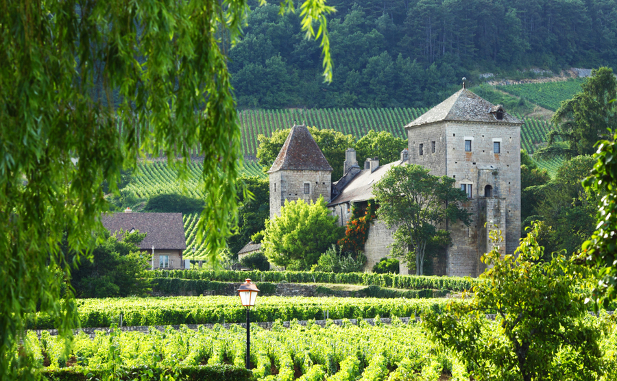 Having made the leap from city living to life in rural France, I've never looked back.