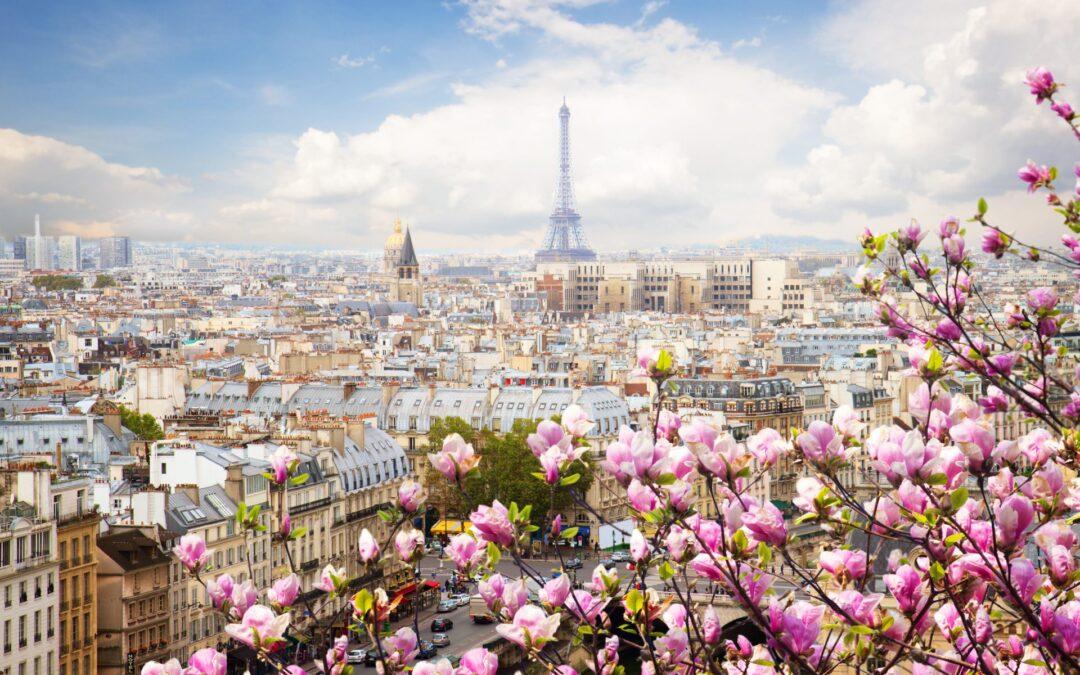 Paris boosts France's prime property market