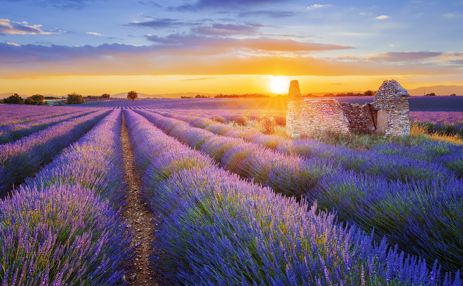 5 luxury locations in Provence