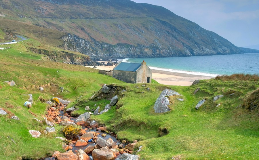 Buying in Ireland, Part Three: Where To Buy