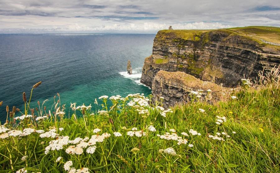 Take a springtime viewing trip to Ireland