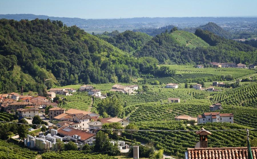 conegliano-valdobbiadene-region-italy-3-aug-2016-region-in-northern-italy-famous-for-its-wineries-producing-original-prosecco-sparkling-white-wine