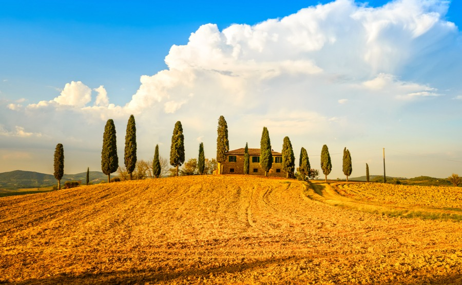 As in previous years, we expect to see a lot of interest from overseas buyers in the rural Italian property market in 2019.