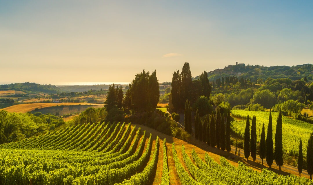 Running a holiday accommodation business in Italy
