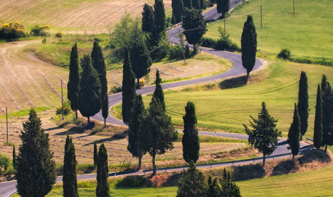 How to exchange your driving licence before Brexit in Italy