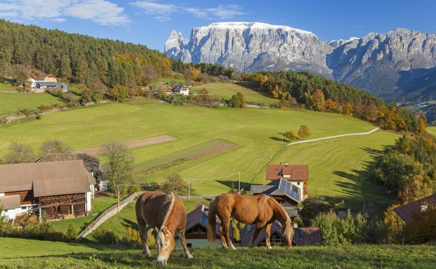 Your guide to Trentino-Alto Adige