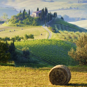 The Italian countryside is perfect for walking or cycling in.