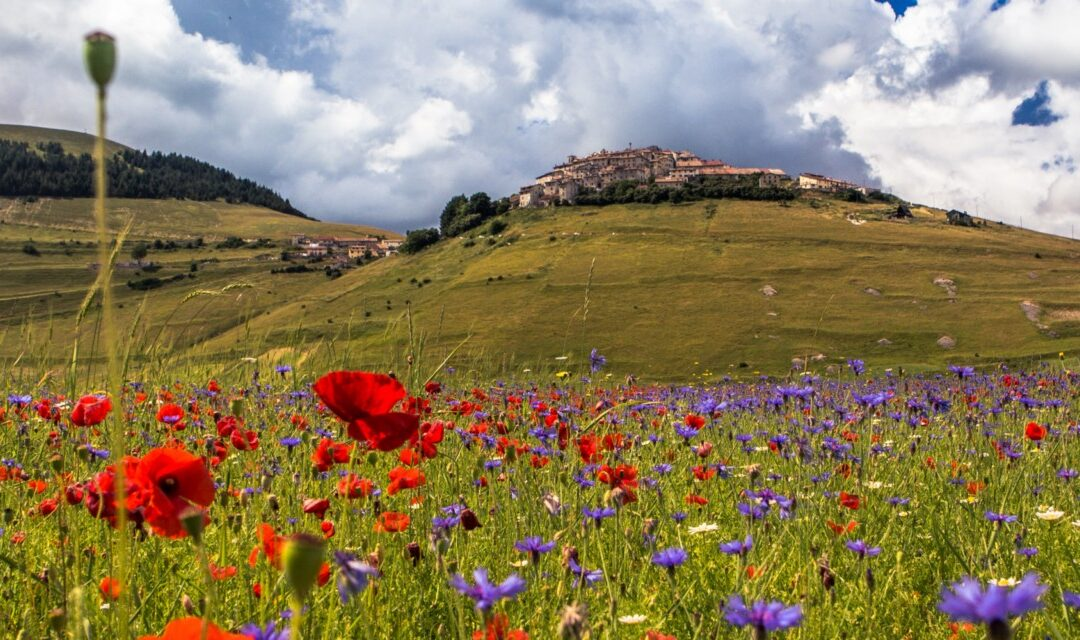 Holiday homes in Italy's most beautiful countryside