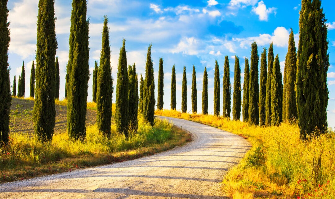 Your 10 favourite Italian regions for buying