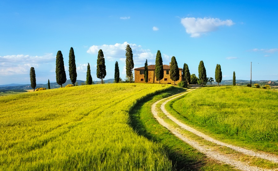 A typical Italian countryside scene: cypress trees and an old farmhouse. StevanZZ / Shutterstock.com