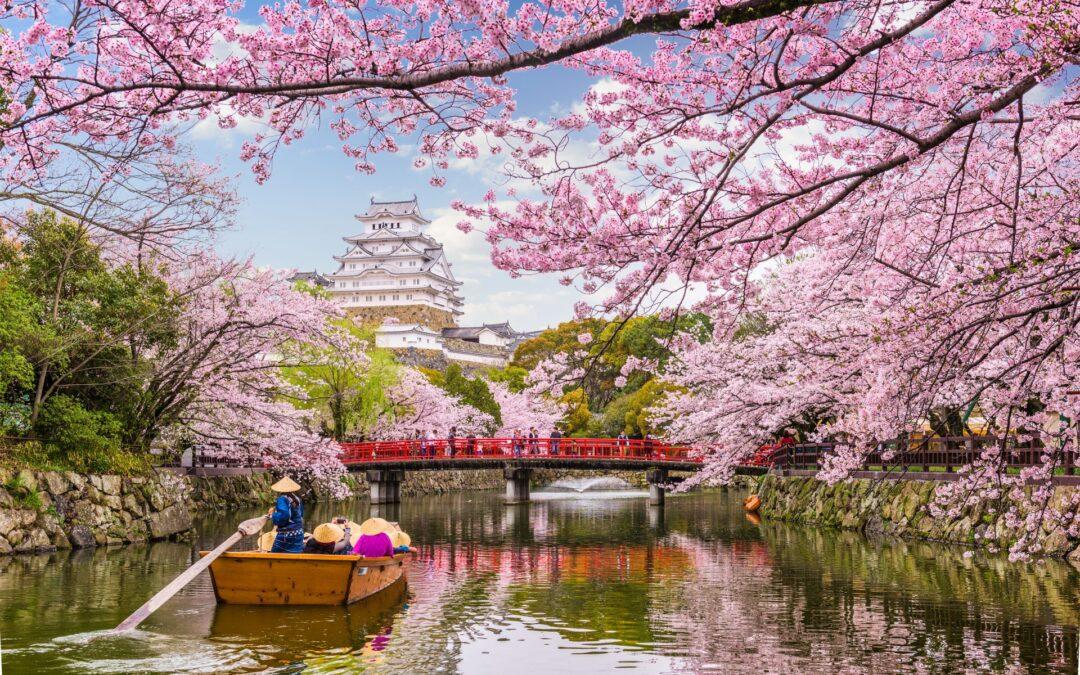 Springtime around the world