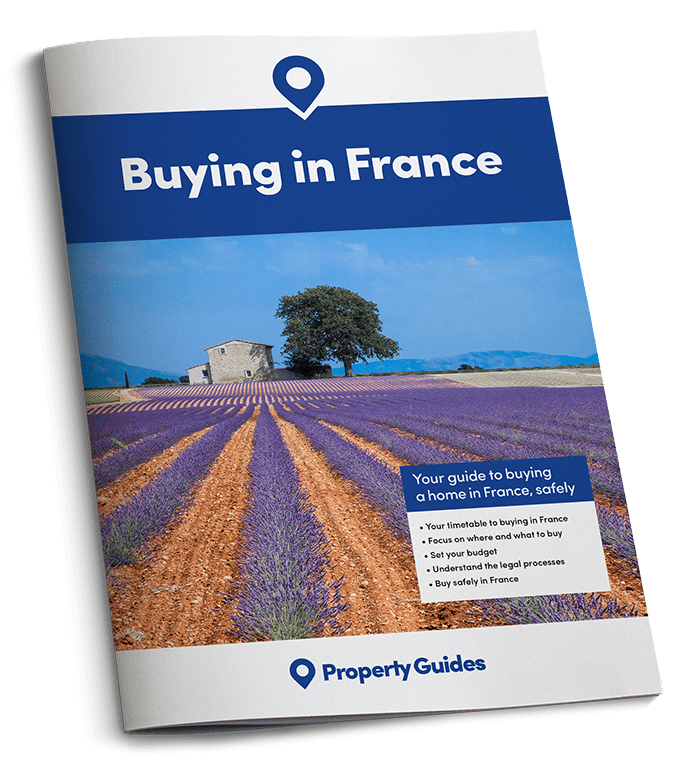 France Buying Guide cover image