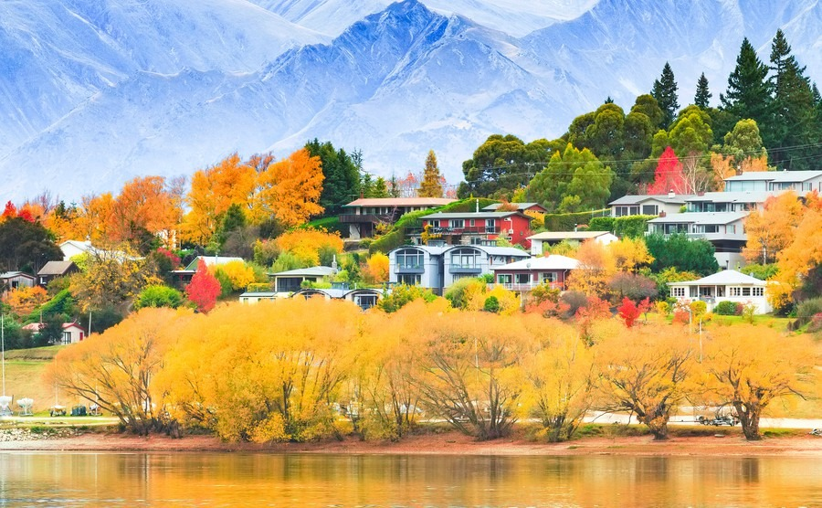 Why you should visit New Zealand during their autumn