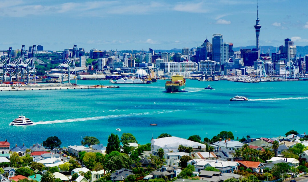 Starting a new life in Auckland