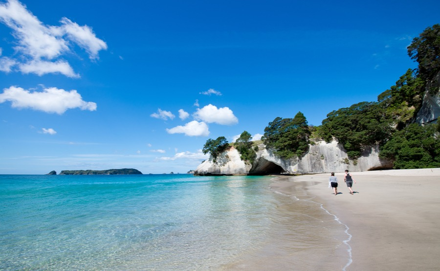 Swap the gloomy British winter for a glorious New Zealand summer!