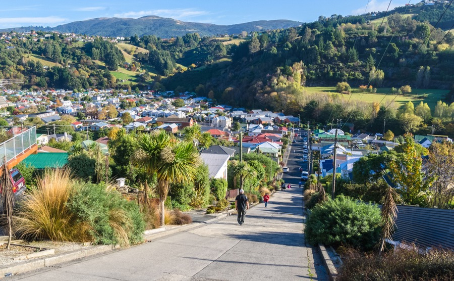 Dunedin is perfect for anyone looking to take up a new hobby when they move!