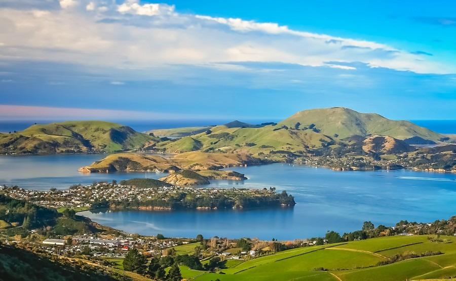 A guide to Dunedin