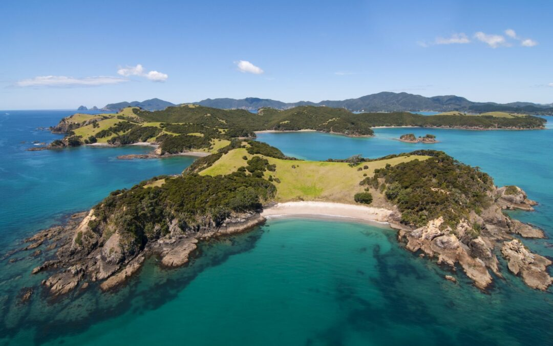 Will New Zealand's foreign buyer ban affect you?