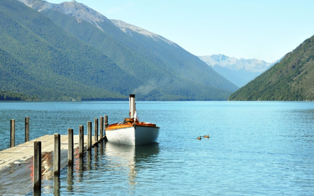 New Zealand properties to drool over