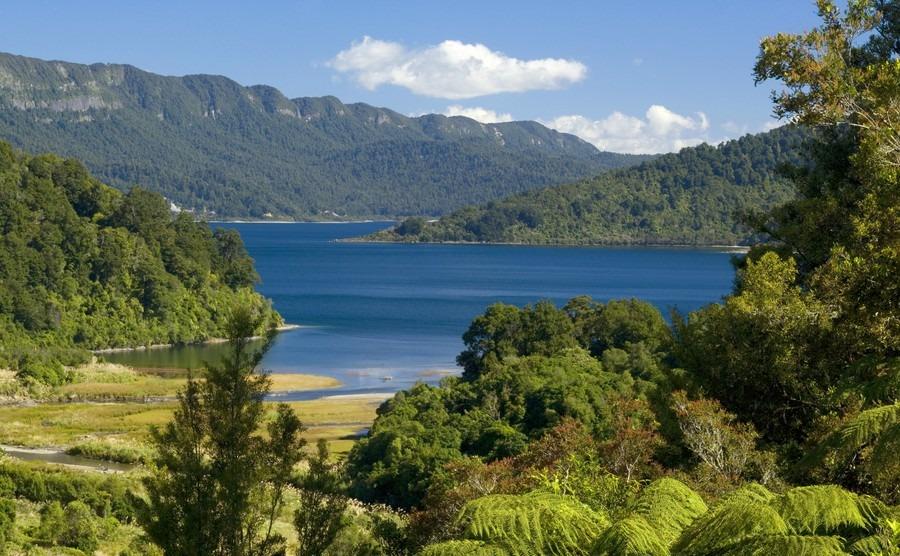 Buyers desert Auckland for cheaper towns