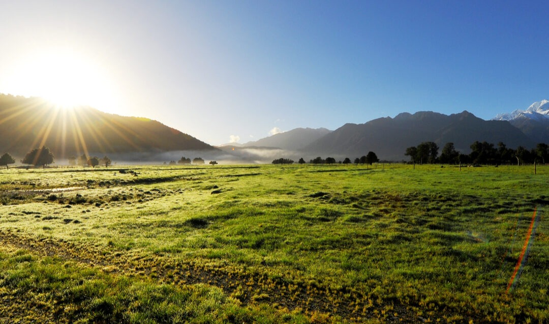 How can you find land to build on in New Zealand?