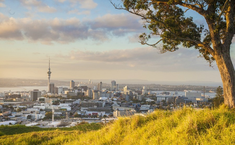 A guide to Auckland
