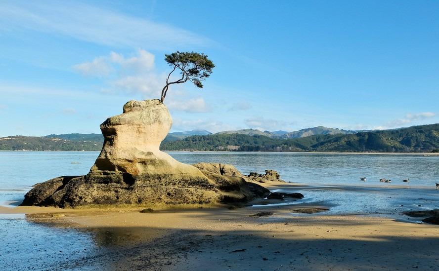New Zealand's best seaside towns