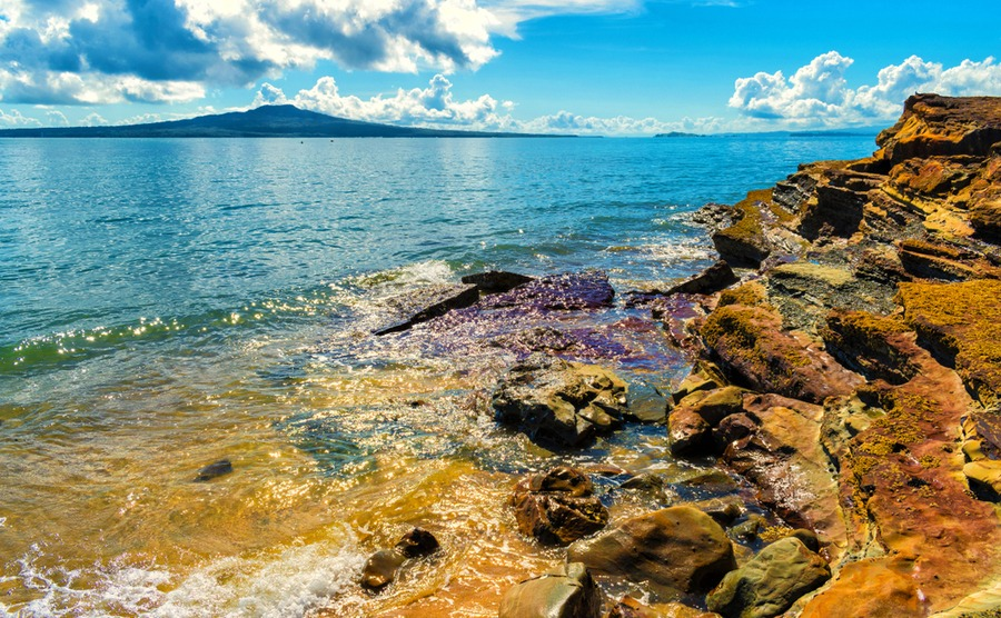 Takapuna is consistently rated as one of the best areas to buy for families.
