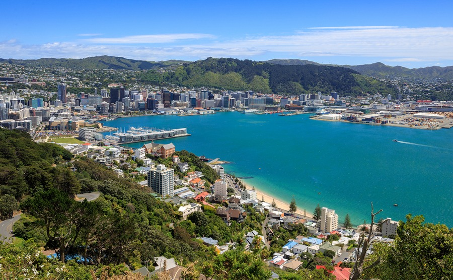 When buying in Wellington, it's important to consider the sunshine aspect.