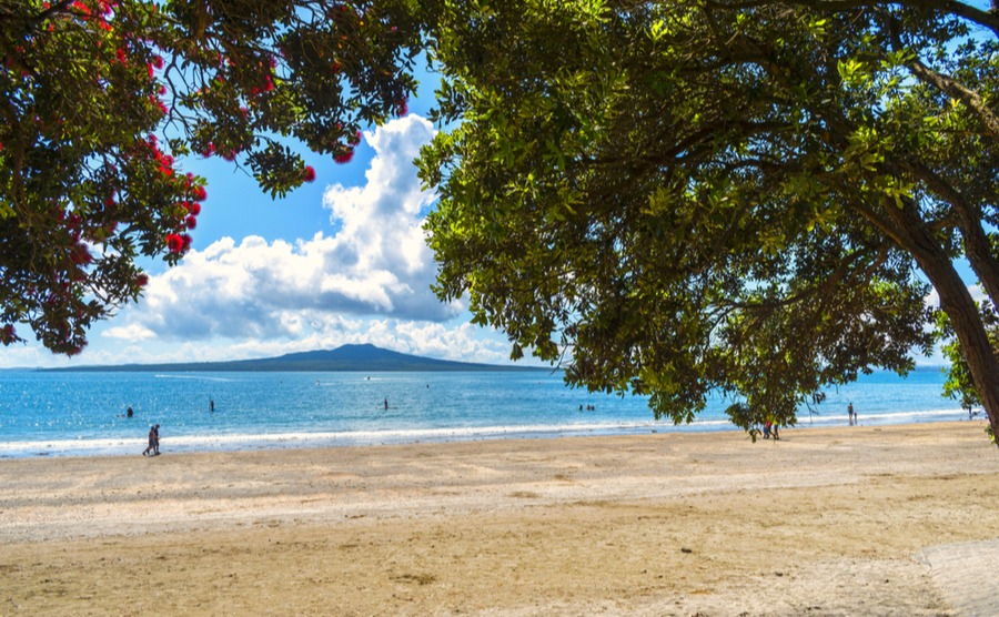 Living in Takapuna puts you in easy reach of some stunning beaches.