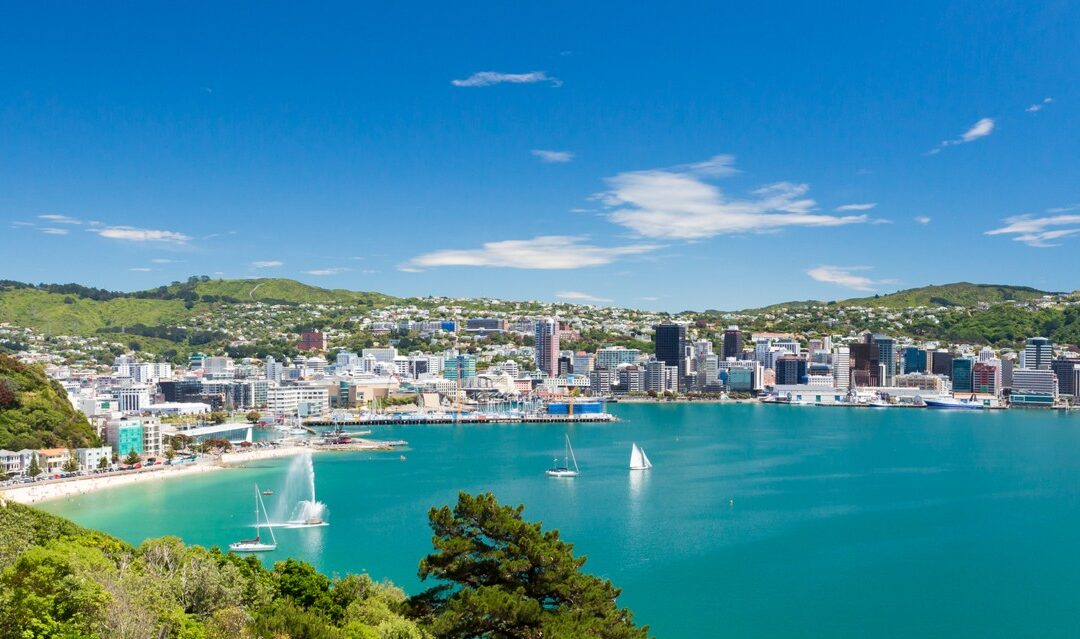 Where to buy in New Zealand in 2021