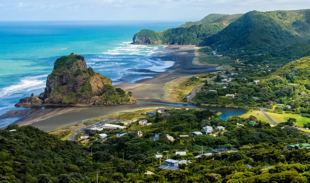 New Zealand looks to the future as Covid-19 cases drop