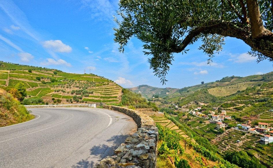 Driving in Portugal. the Douro Valley next to vineyards and small village.