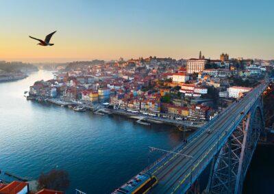 Portuguese legal information