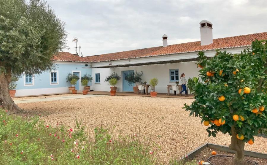 Herdade da Maladinha Nova is a typical family-owned estate in the Alentejo.