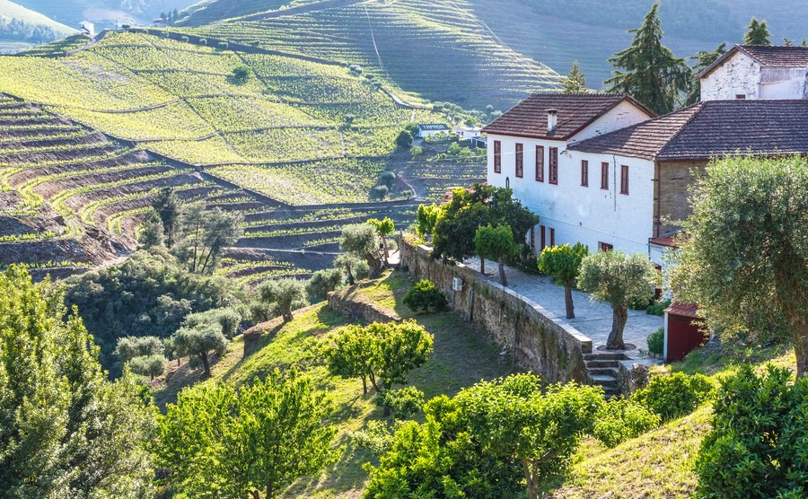 Achieve the dream of the country life in Portugal - Portugal ...