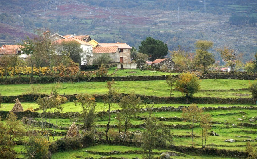 A rural life in Portugal: the pros and cons