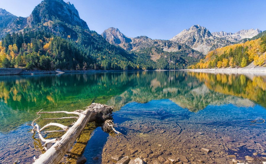 If you love the natural world, you'll love Spain