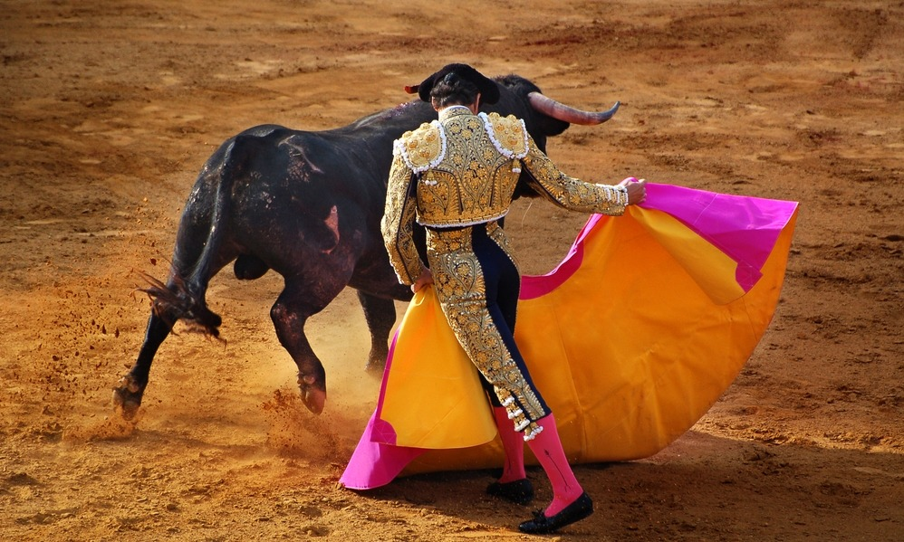 Spain News - Bullfighting; blood or art